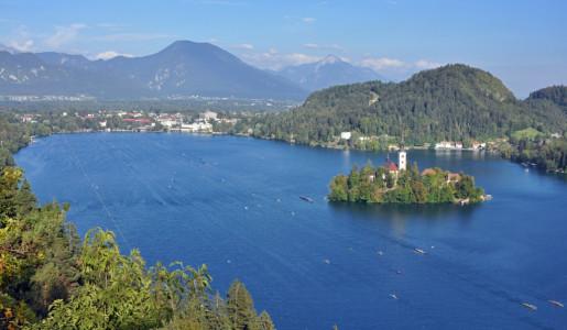 65. Mednarodna regata Bled 2021 – rekordna udeležba in številni slovenski nastopi