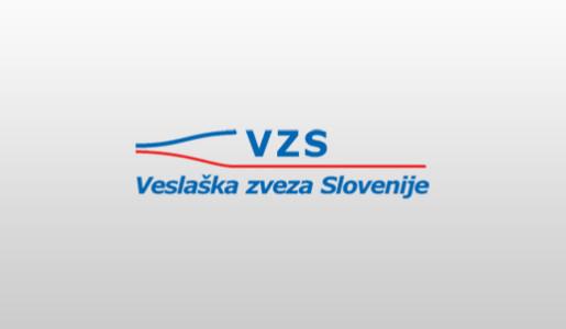 VZS logo