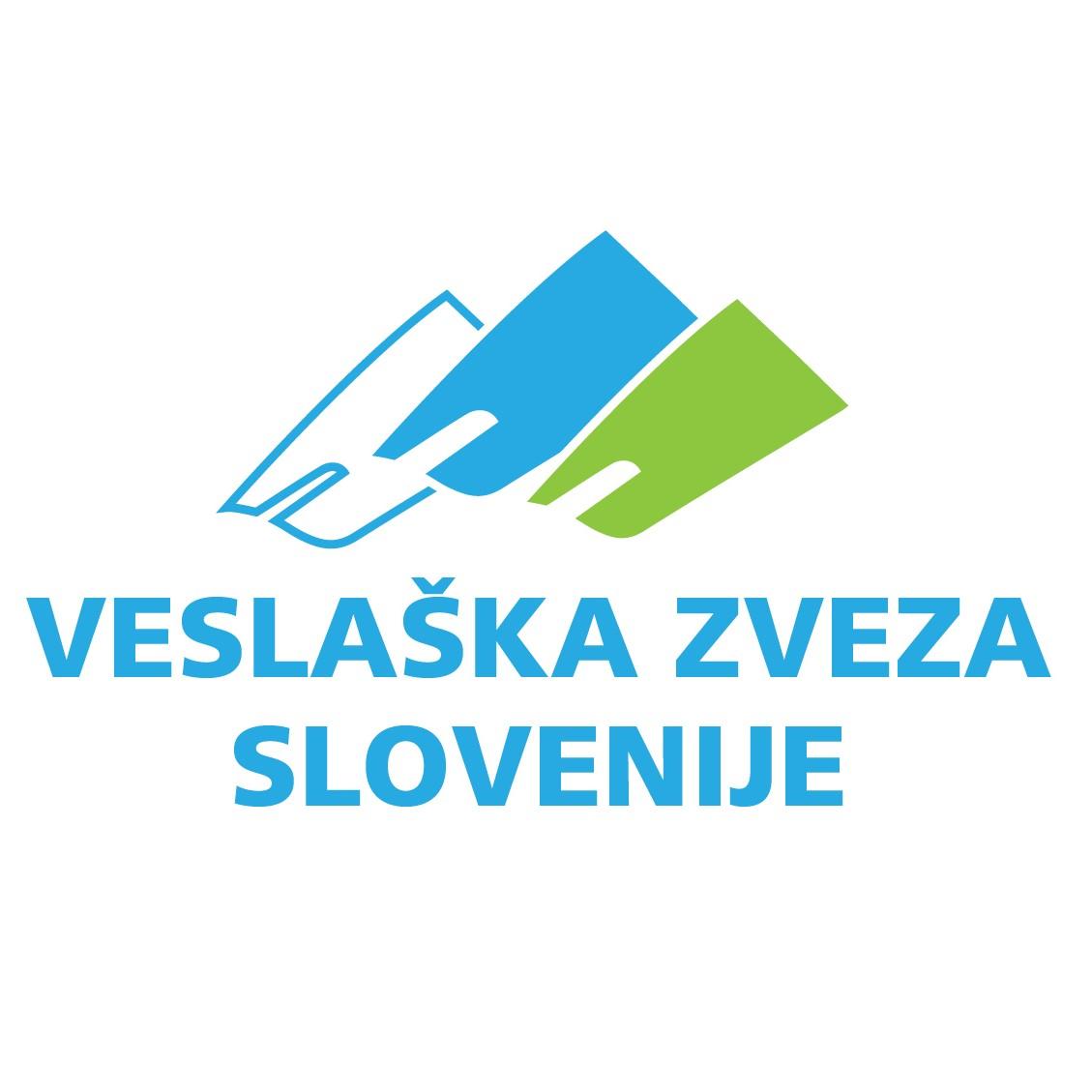 Logo VZS