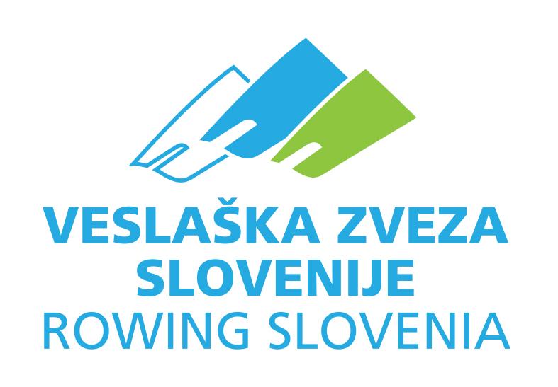 VZS logo 5