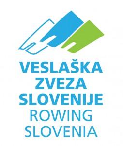 VZS logo 7